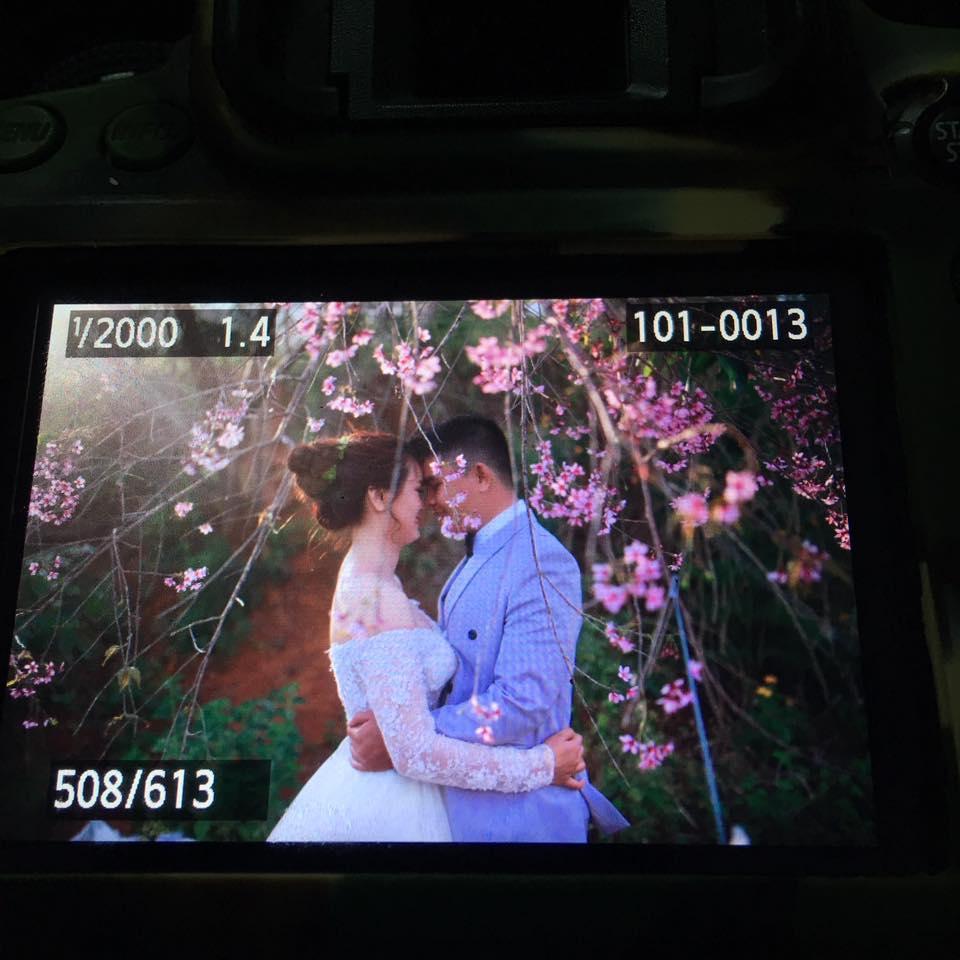 chụp ảnh cưới bmt , chụp ảnh cưới đà lạt đẹp